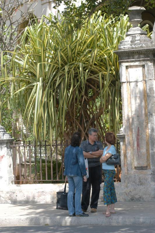 082 Habana  -Su gente-