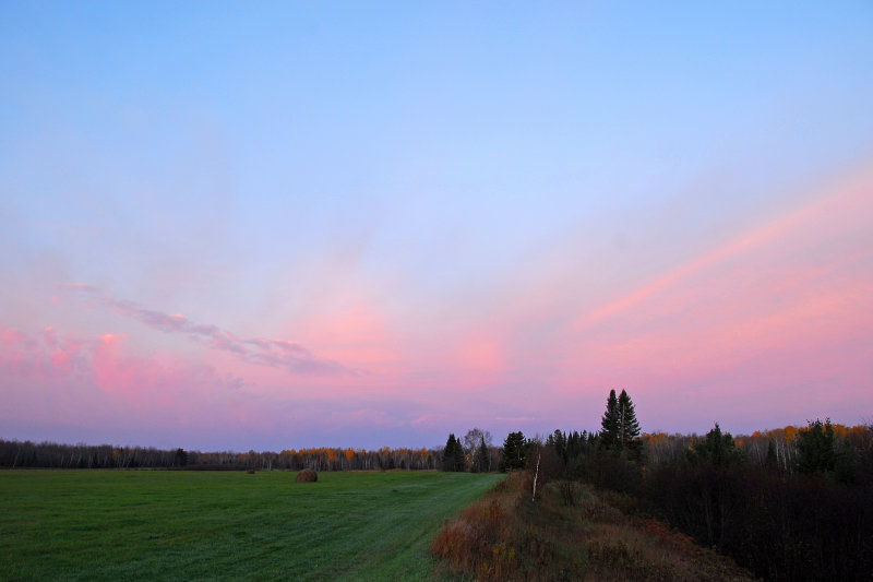 Baby blue & pink morning sky