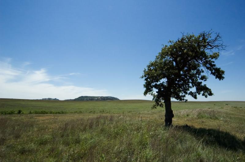Wichita Wildlife Refuge, Oklahoma (_DSC1226)
