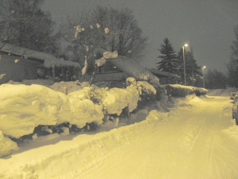 Simply snow