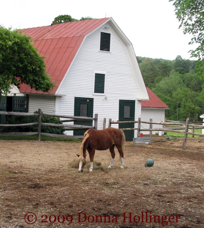 Horse and Barn at Twilight