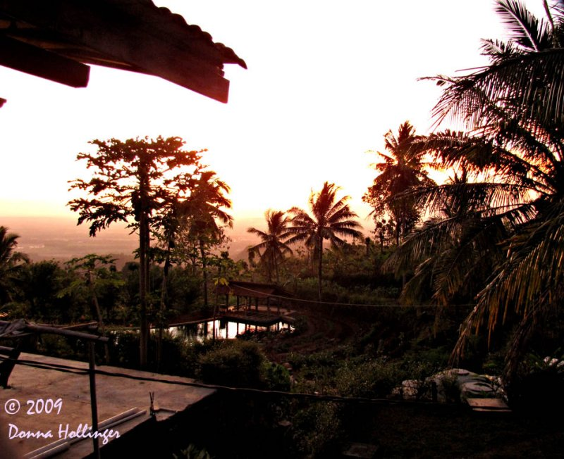 Iskandars Garden at Sunset