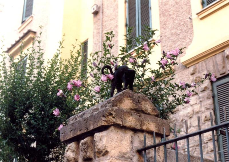 Kitty at the Castle