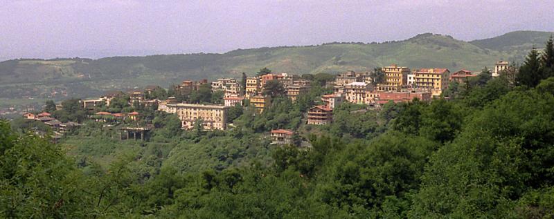 Village seen from Nemi