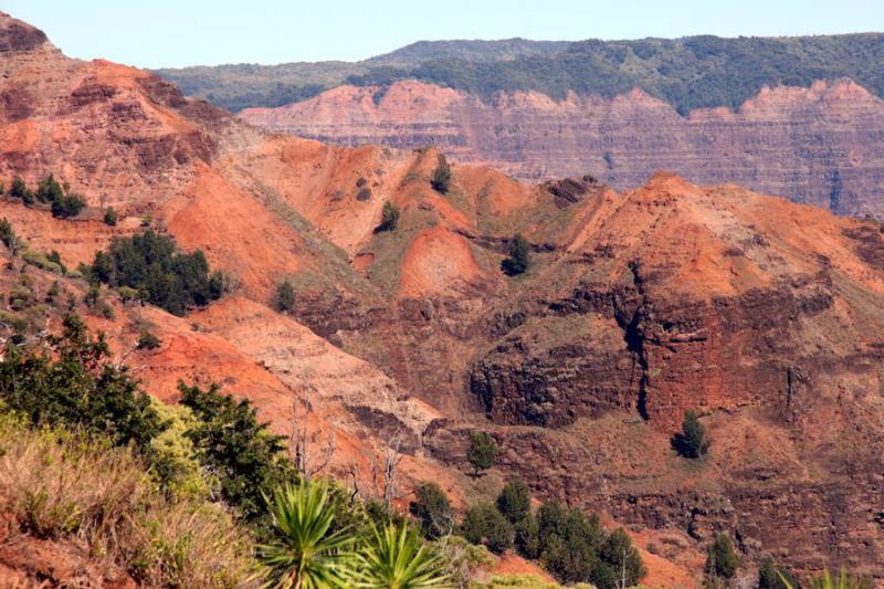 Red dirt! Waimea canyon