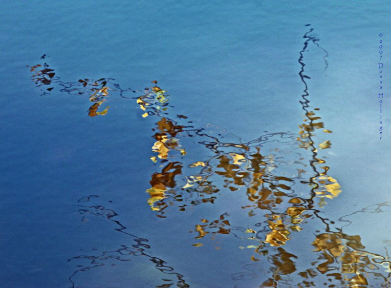 Blue Water and Ochre Leaves
