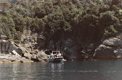 Boat in Tigullio Cove