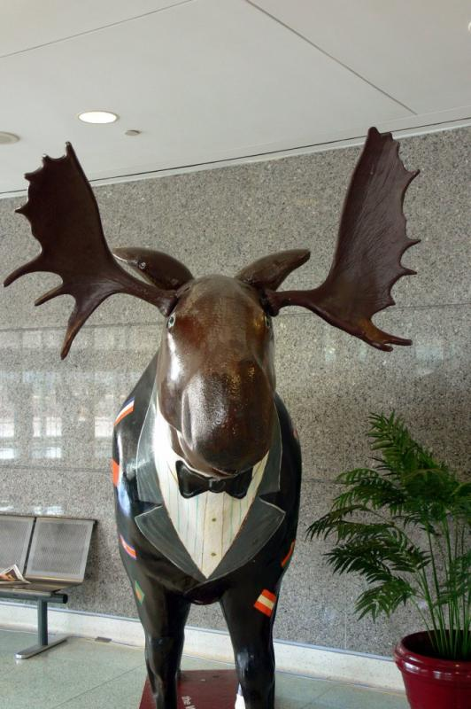 The Moose at Toronto Convention Center