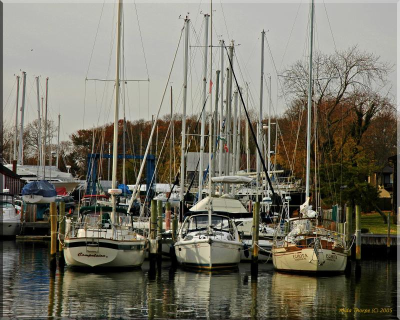 docked on the Patchogue river