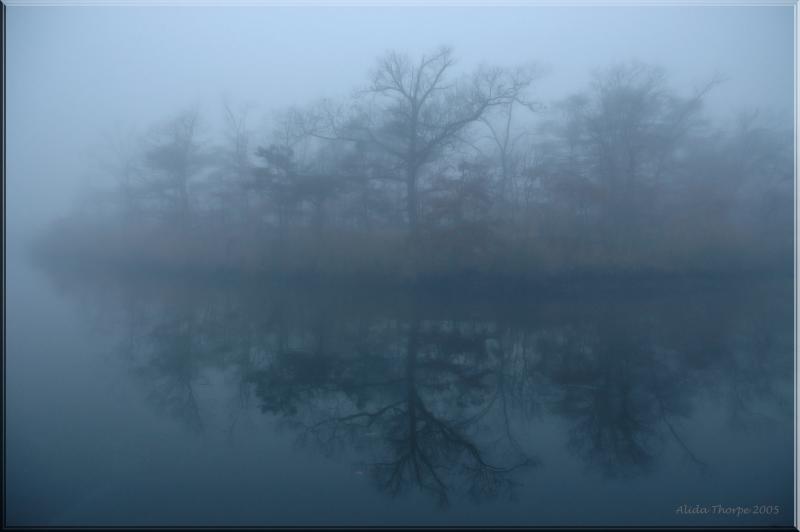 Christmas Morning Fog