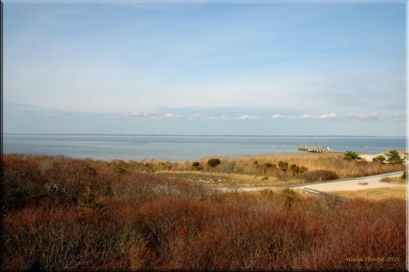 Barret Beach in November