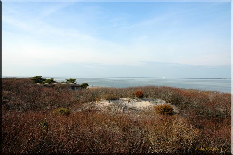 Barrett Beach looking  northwest