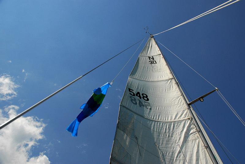 548 sail