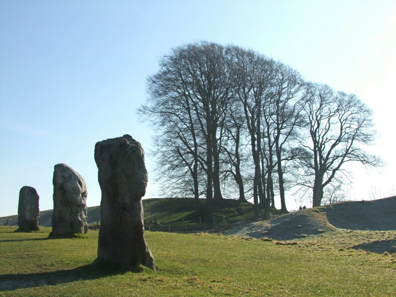 Standing  stones  and  trees  at  Avebury.