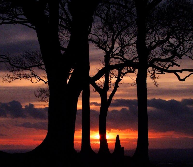 Sunset  from  Olivers  Castle  hillfort / 3