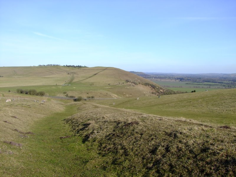 Looking  east  along  cross  dyke  to  Knap  Hill  and  beyond.