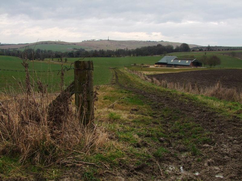 Calstone  Barn  and  the  Cherhill  Monument.