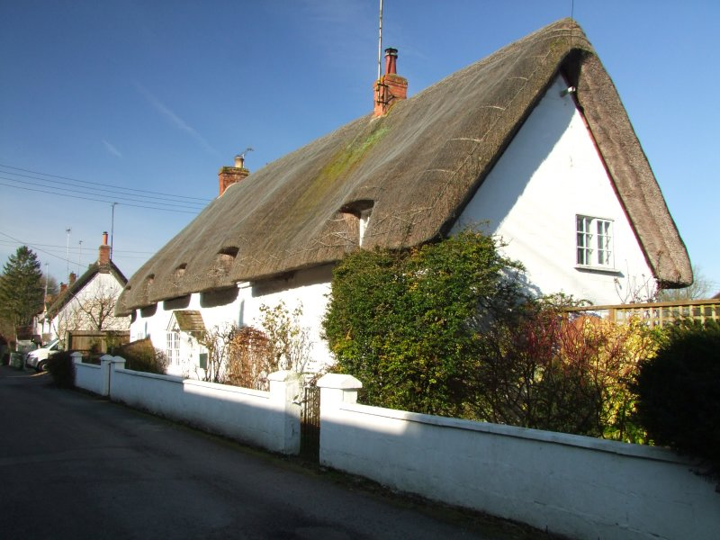 A  thatched  white  walled  cottage.