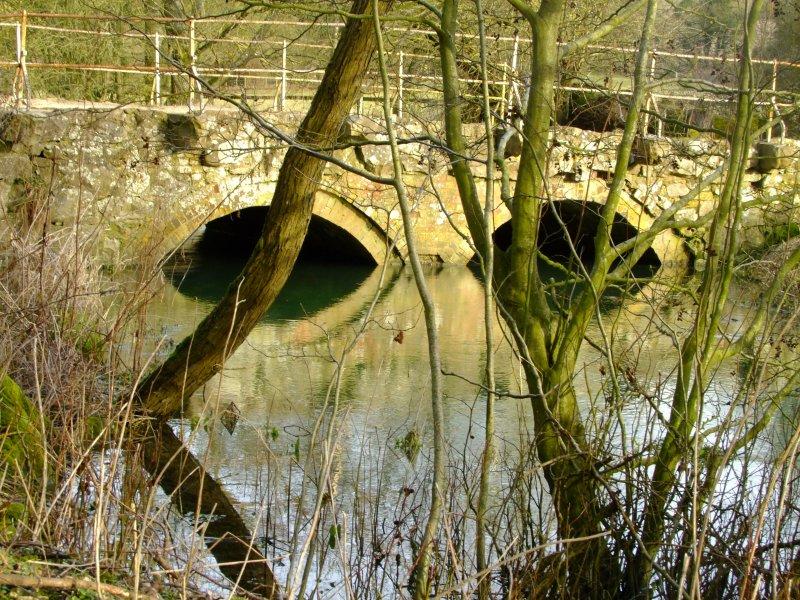 The spectacles bridge.