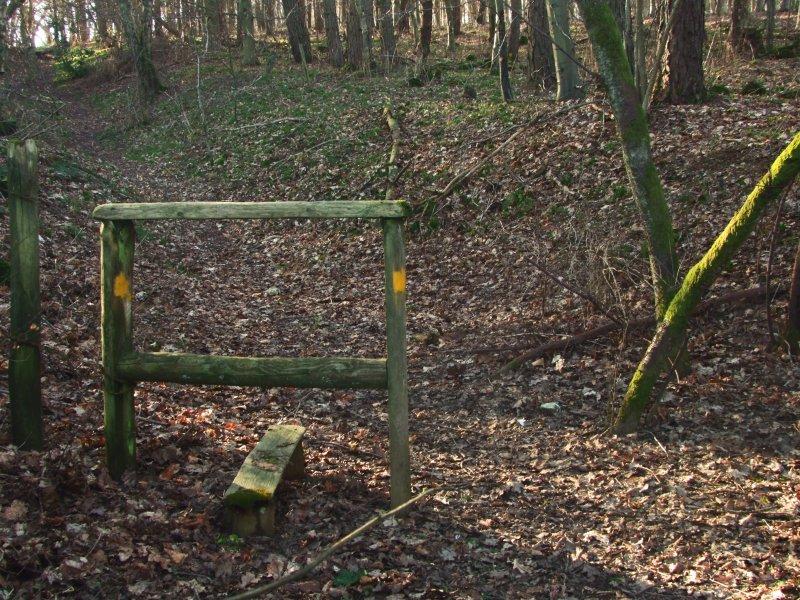 The  Wansdyke  Path in Strawberry  Ground.