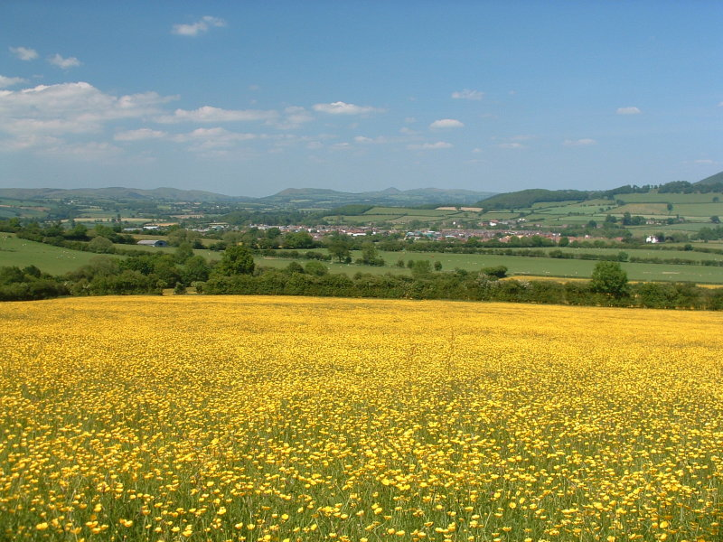 Looking  north  to  the  Stretton  Hills.