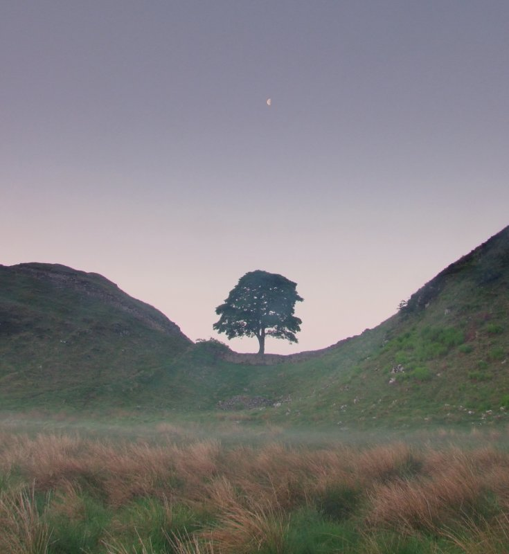 The  moon  over  Sycamore  Gap.