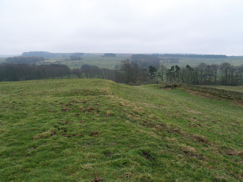 The  western  ramparts  of  the  Roman  fort  of  LAVATRIS.