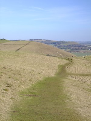The  White  Horse Trail   along  Walkers  Hill.