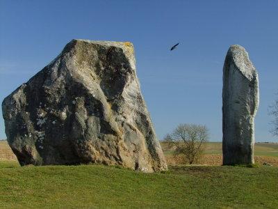 Two  stones  at  Avebury.
