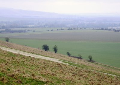Looking  up  a  rainy  Pewsey  Vale.