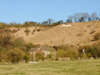 The  Broad  Town  White  Horse.