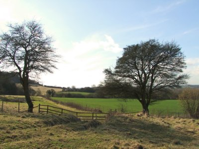 The  White  Horse  Trail  near  Broad Town