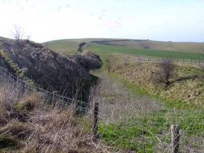 Wansdyke  ditch, looking  west  to  Tan  Hill.