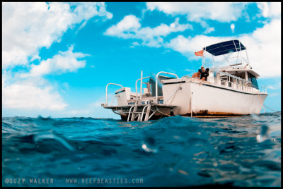 Cross processed boat
