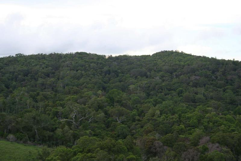 Madagascar Diego Suarez Montagne dAmbre Sakaramy 28.XII.2.JPG