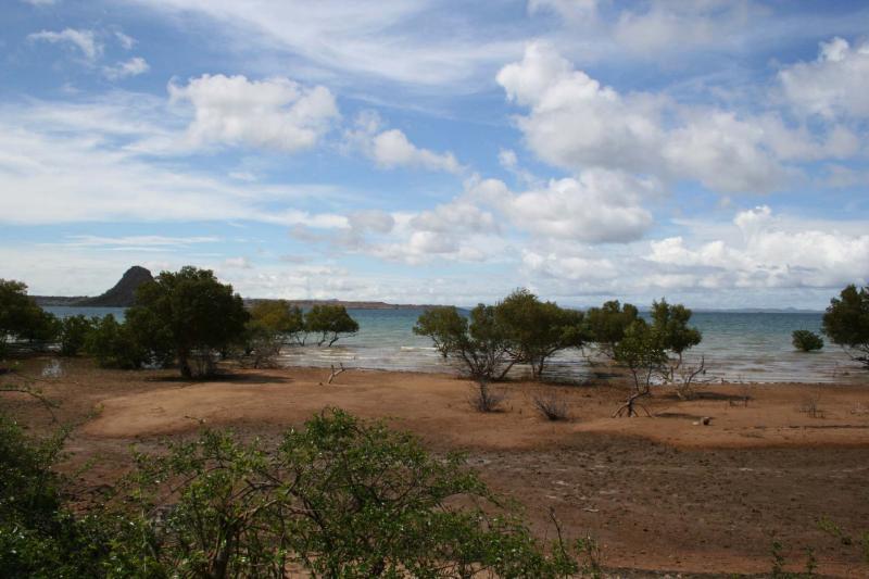 Mangroves Madagascar Diego Suarez near Montagne des Francais.JPG