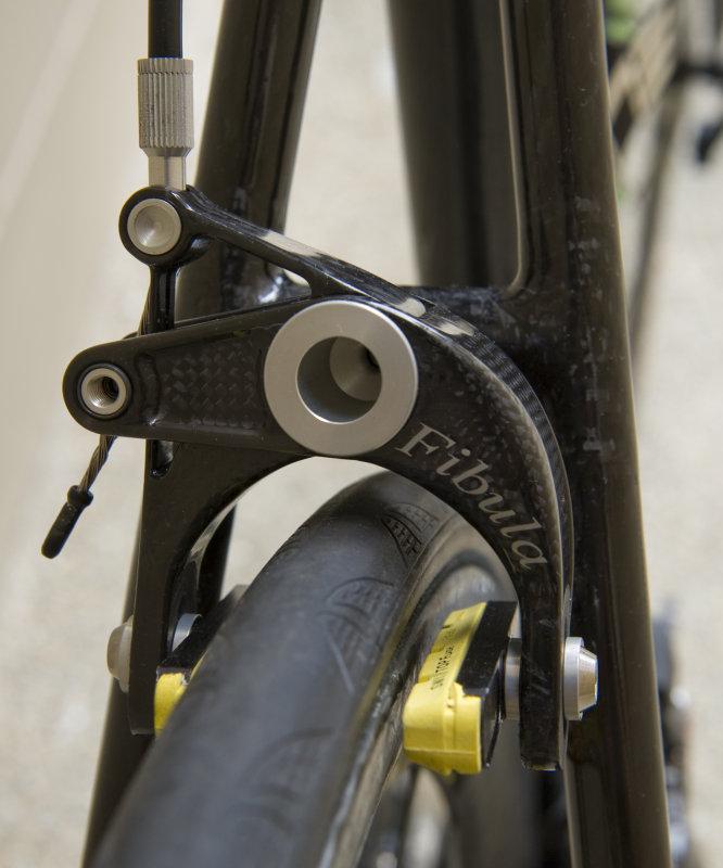 Fibula rear.jpg