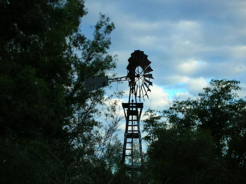 Windmill at the Drovers Woolshed