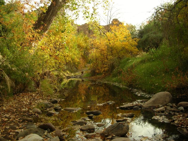 Fall colors along Queen Creek