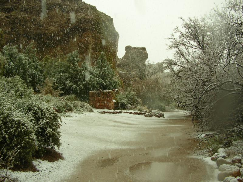 Snow Falling at the Turn-around in the Canyon