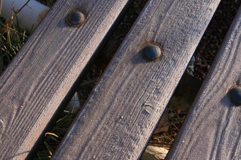 Frost on a bench