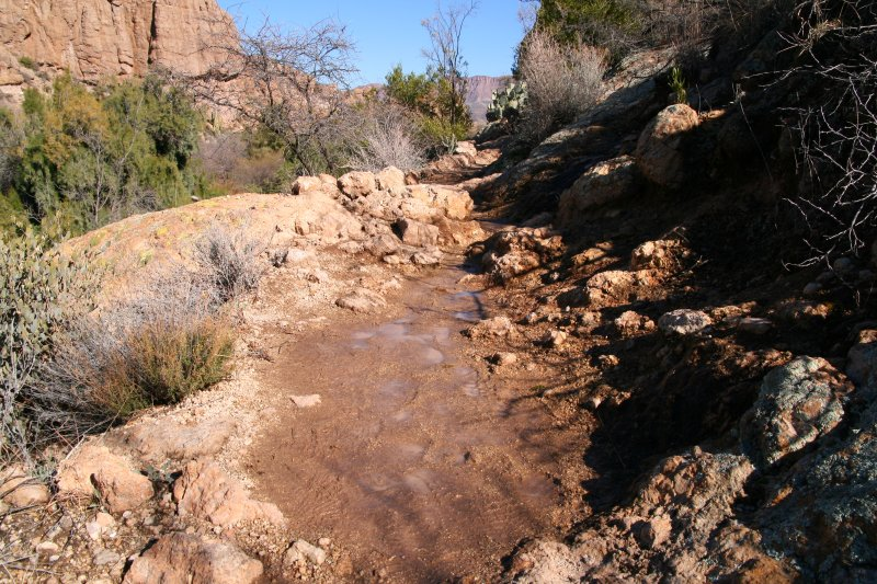 Water running on the High Trail after a rain
