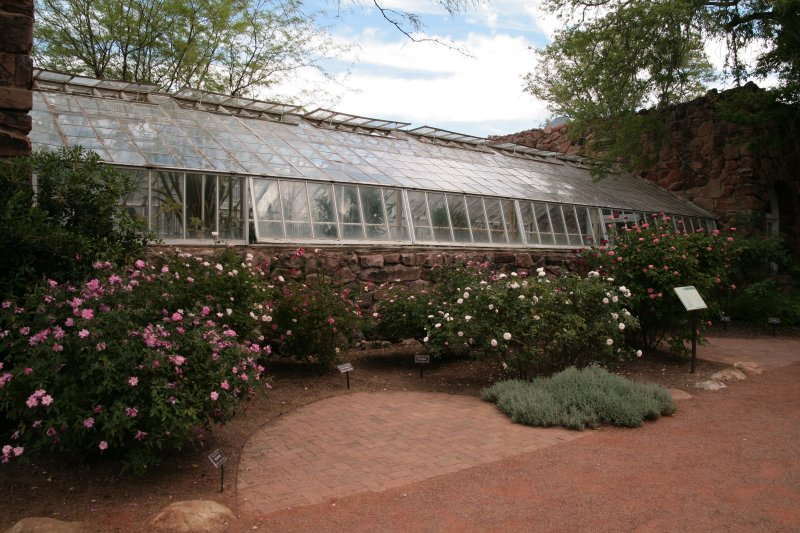 Roses and the Succulent Display Greenhouse