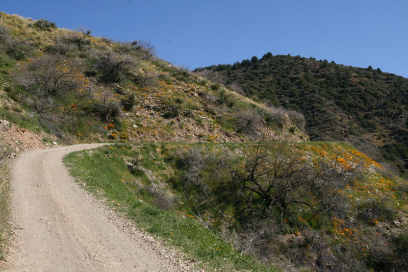 Part of the Switchbacks