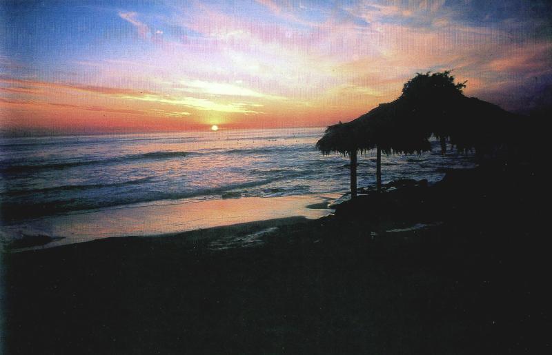 Cover sun set.jpg