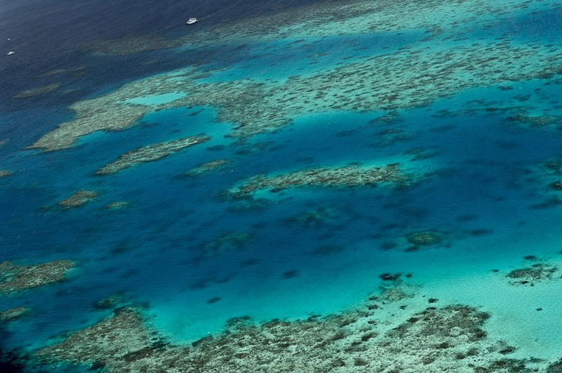 Great coral barrier.