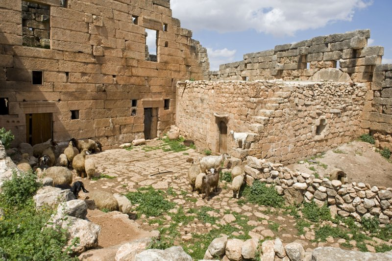 Dead cities from Hama april 2009 8686.jpg