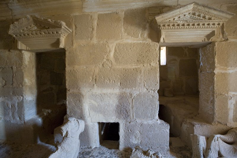 Palmyra apr 2009 9998.jpg