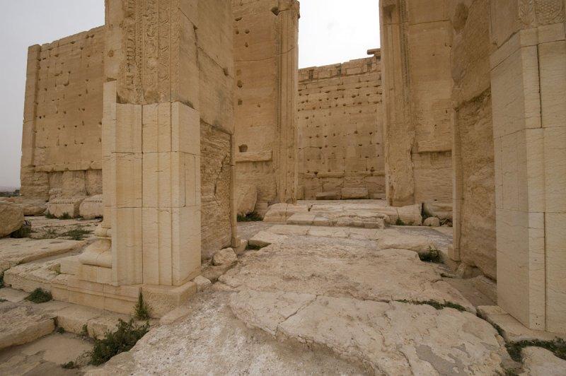 Palmyra apr 2009 0208.jpg
