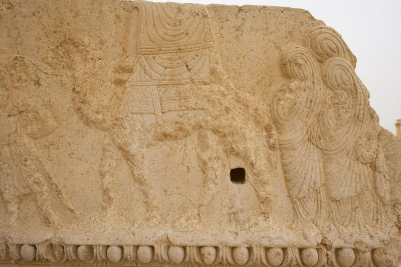 Palmyra apr 2009 0220.jpg